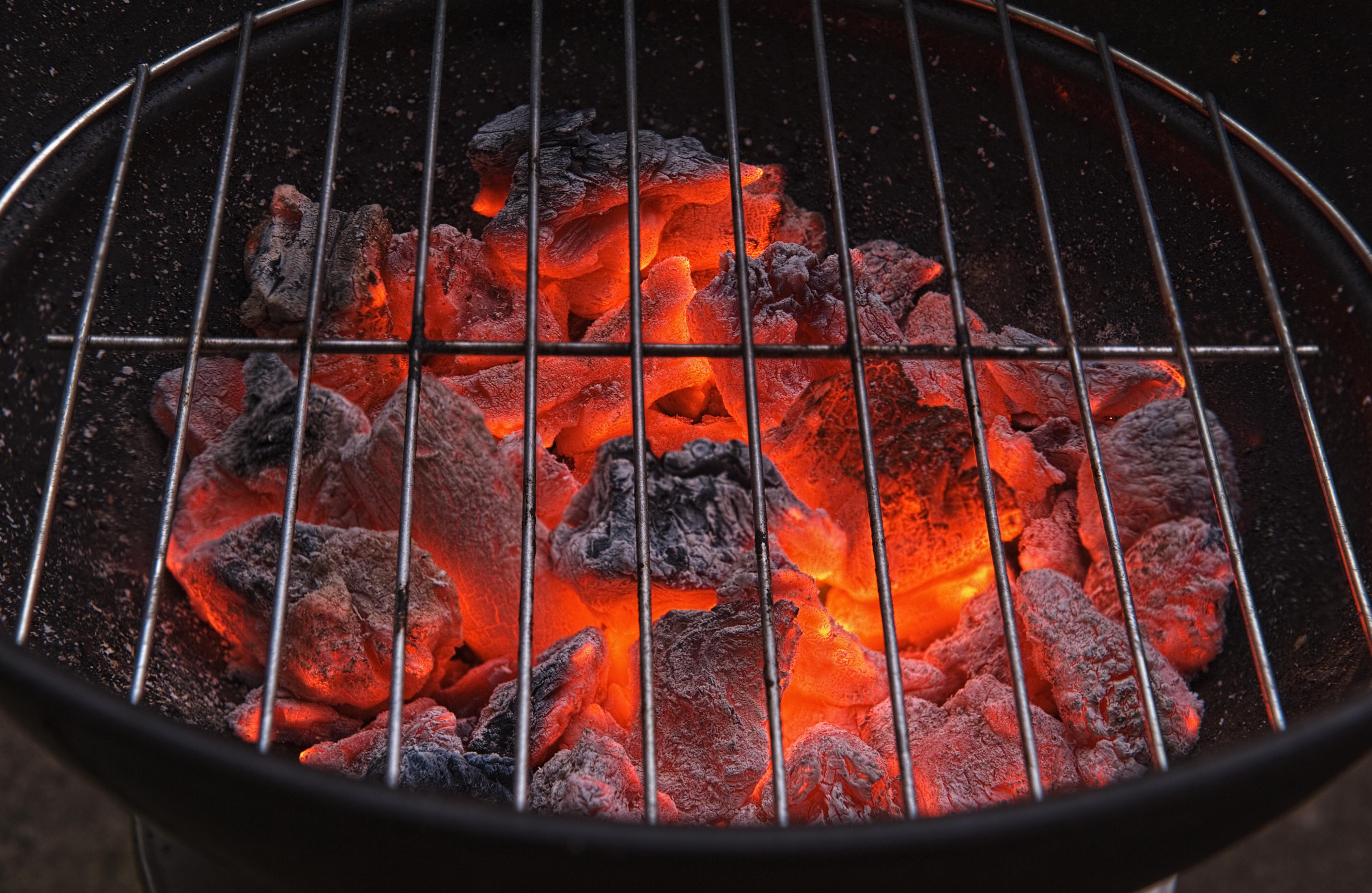 Hofstädter Richtig grillen mit Holzkohle